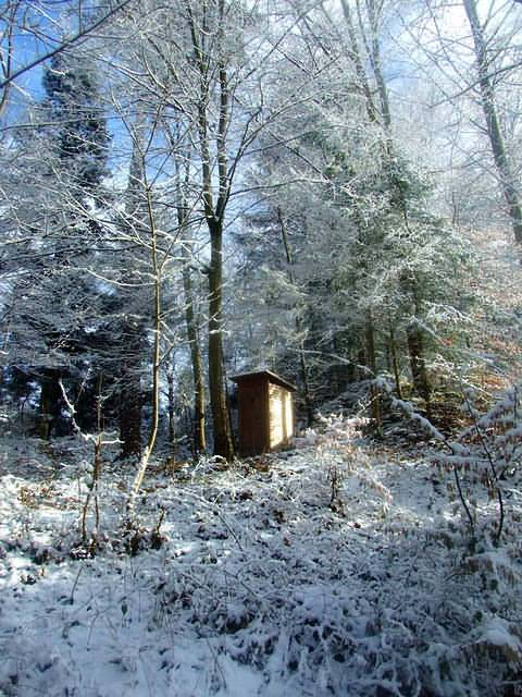 A latrine near the snow camp in the wood.
