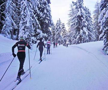 Cross-country skiing through the wood