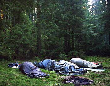 sleep rough in the wood